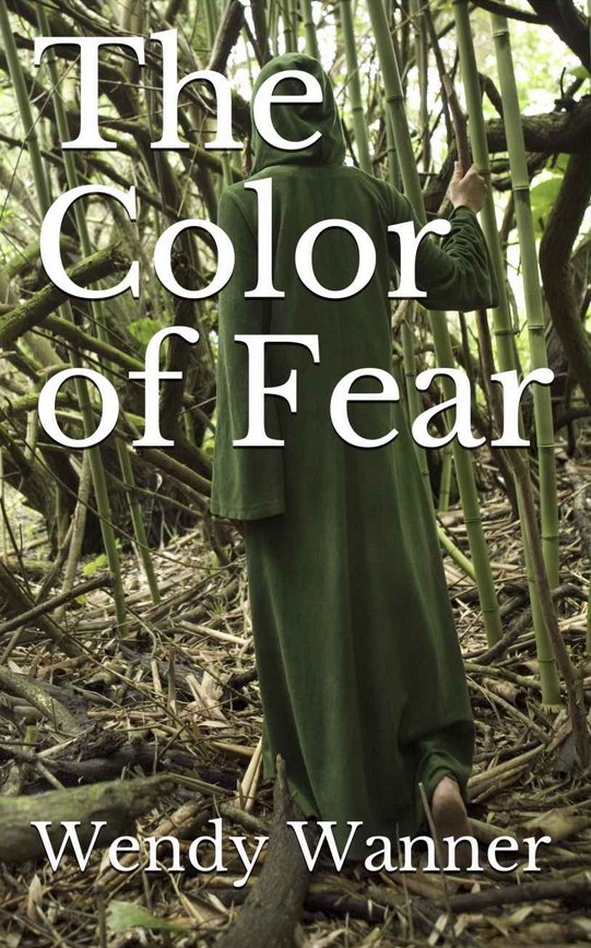 The Color of Fear by Wendy Wanner on BookTweeter.com